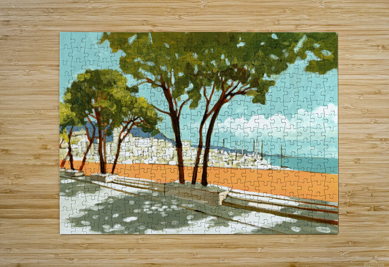 Monaco  HD Metal print with Floating Frame on Back