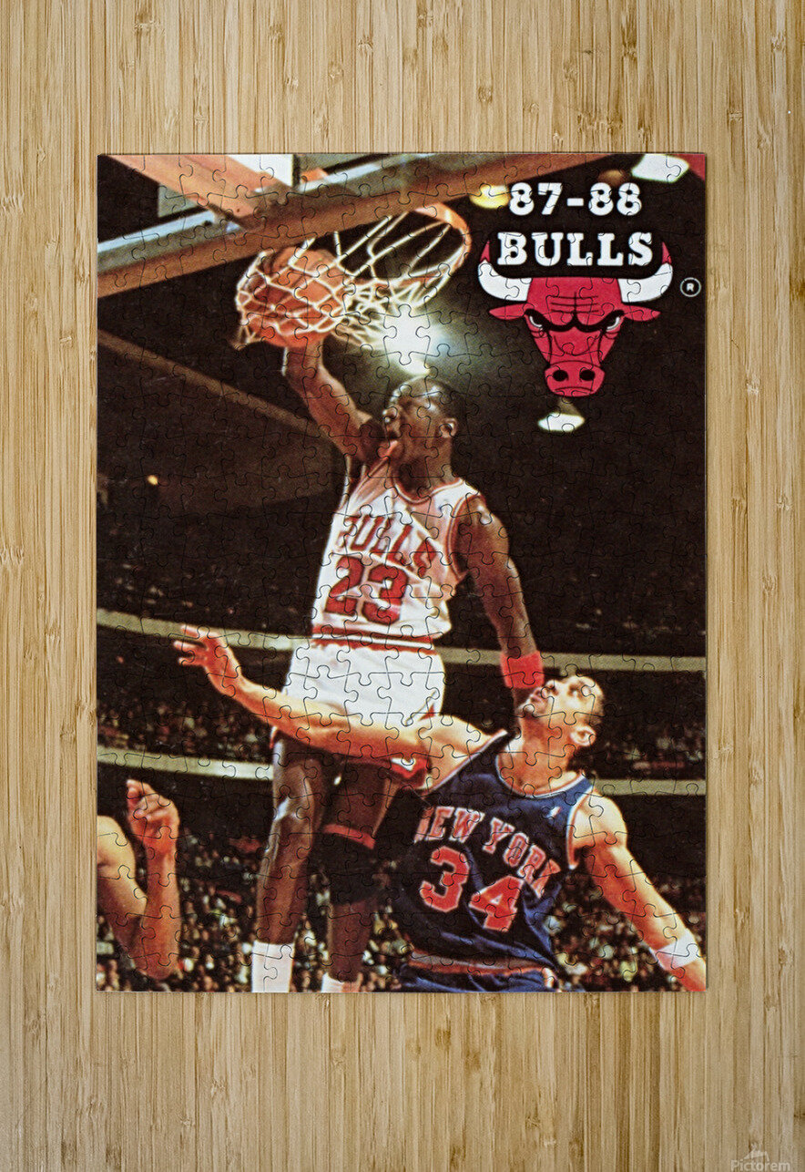 1987 Chicago Bulls Michael Jordan Art  HD Metal print with Floating Frame on Back