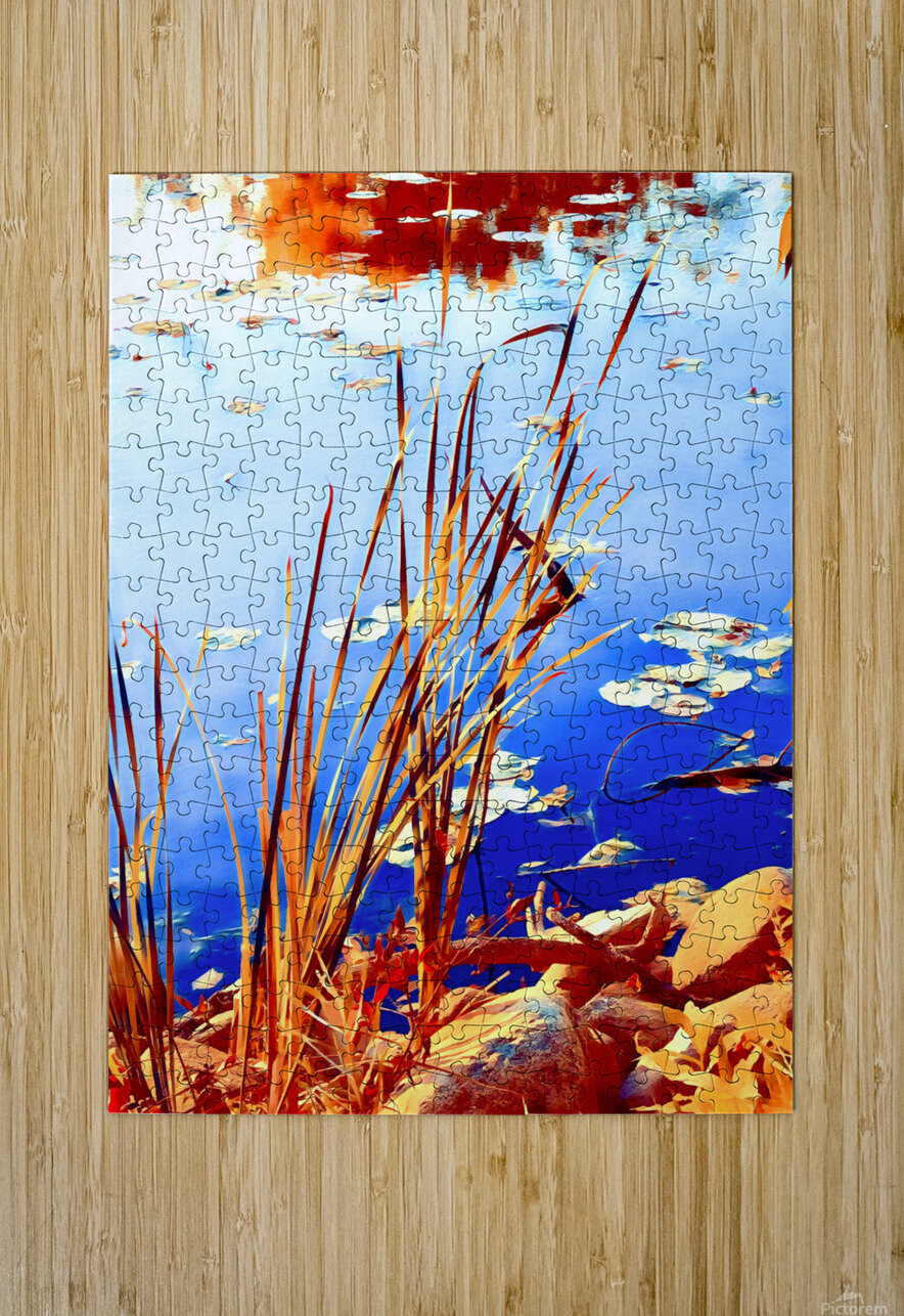 Reed Grasses   HD Metal print with Floating Frame on Back