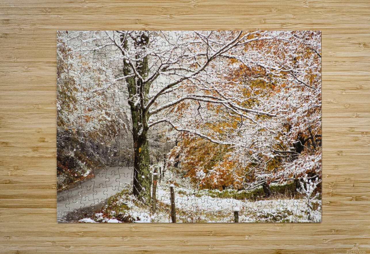October snow Canaan Valley WVa  HD Metal print with Floating Frame on Back