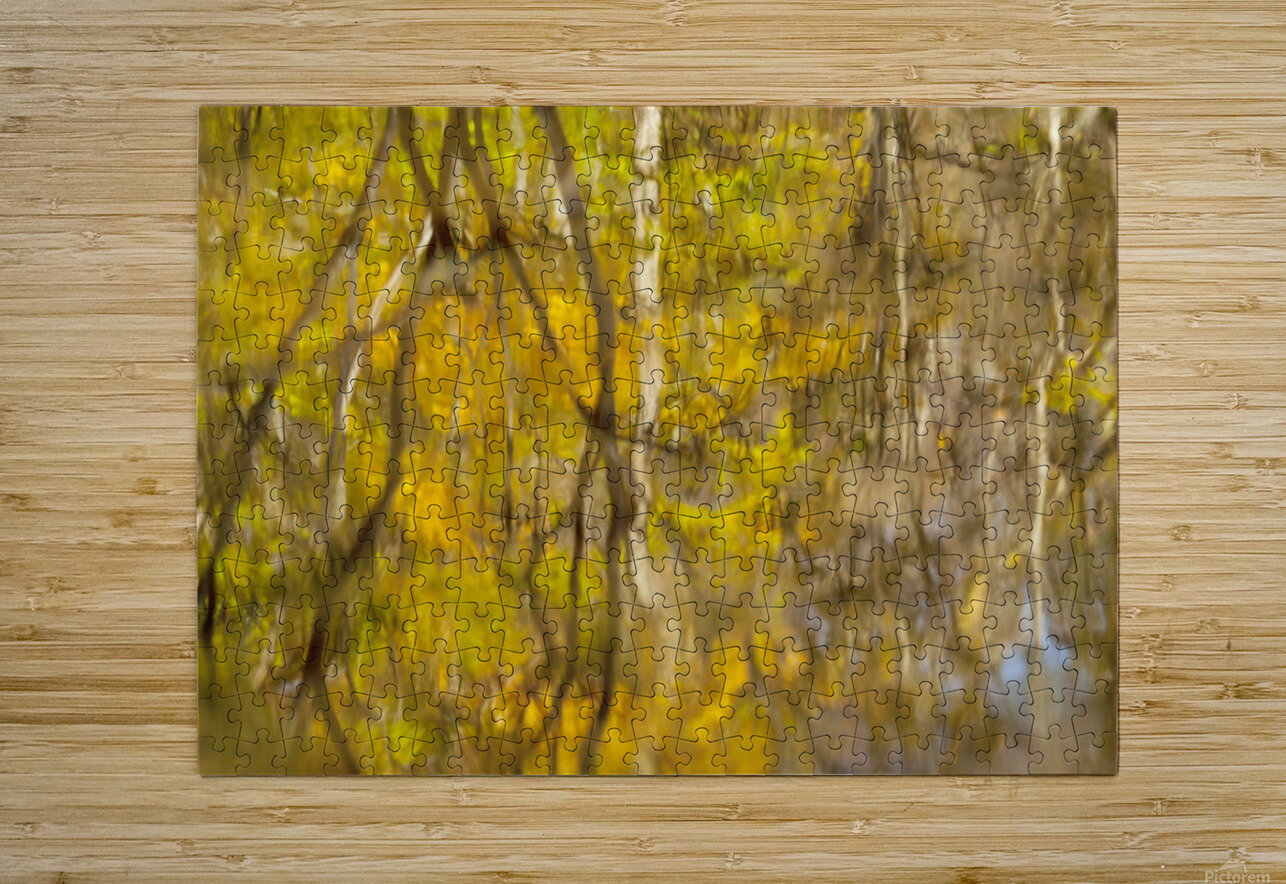 Autumnal swirls reflections  HD Metal print with Floating Frame on Back
