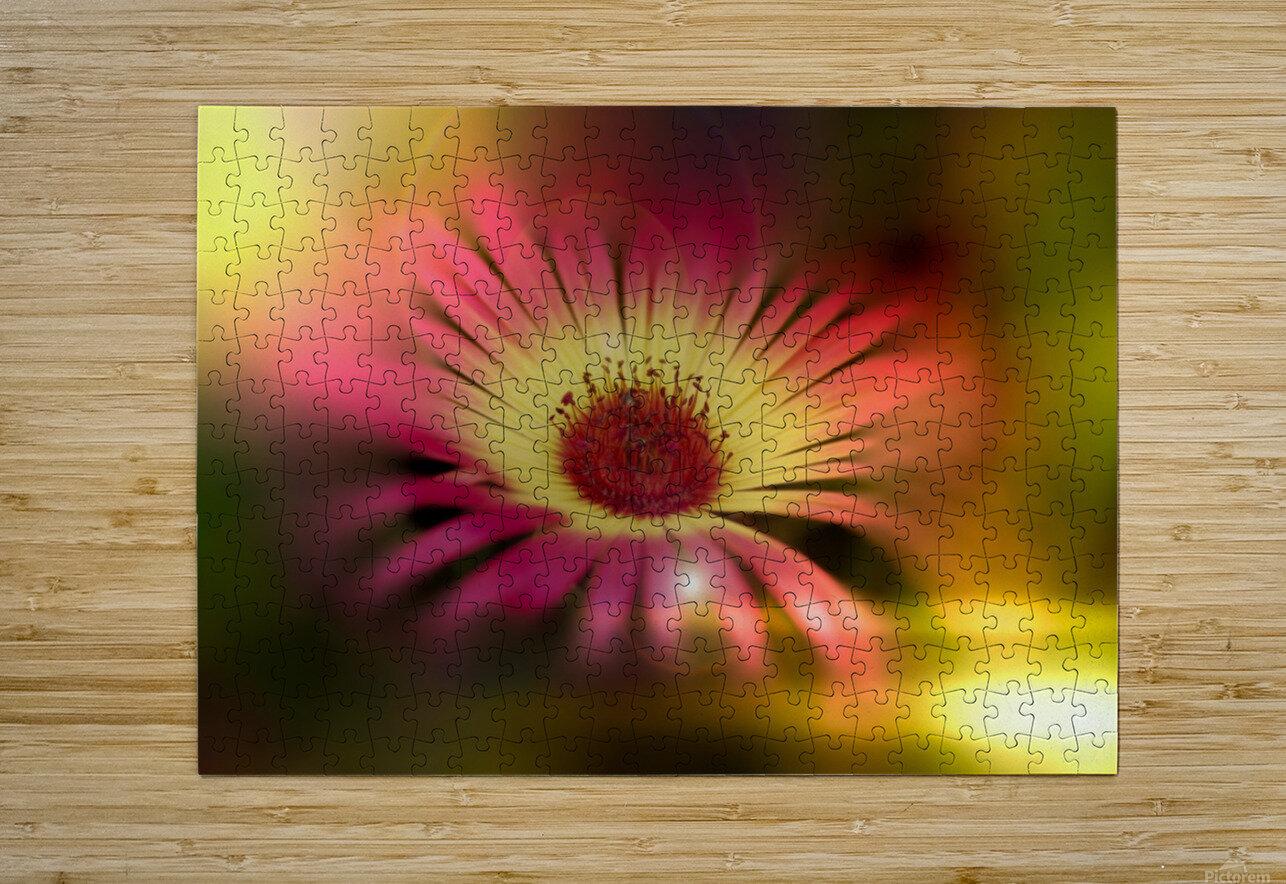 little sunshine  HD Metal print with Floating Frame on Back
