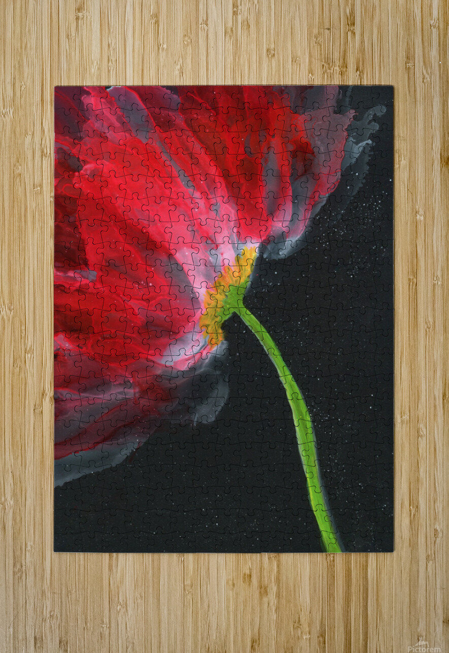 Fantastical Flower  HD Metal print with Floating Frame on Back