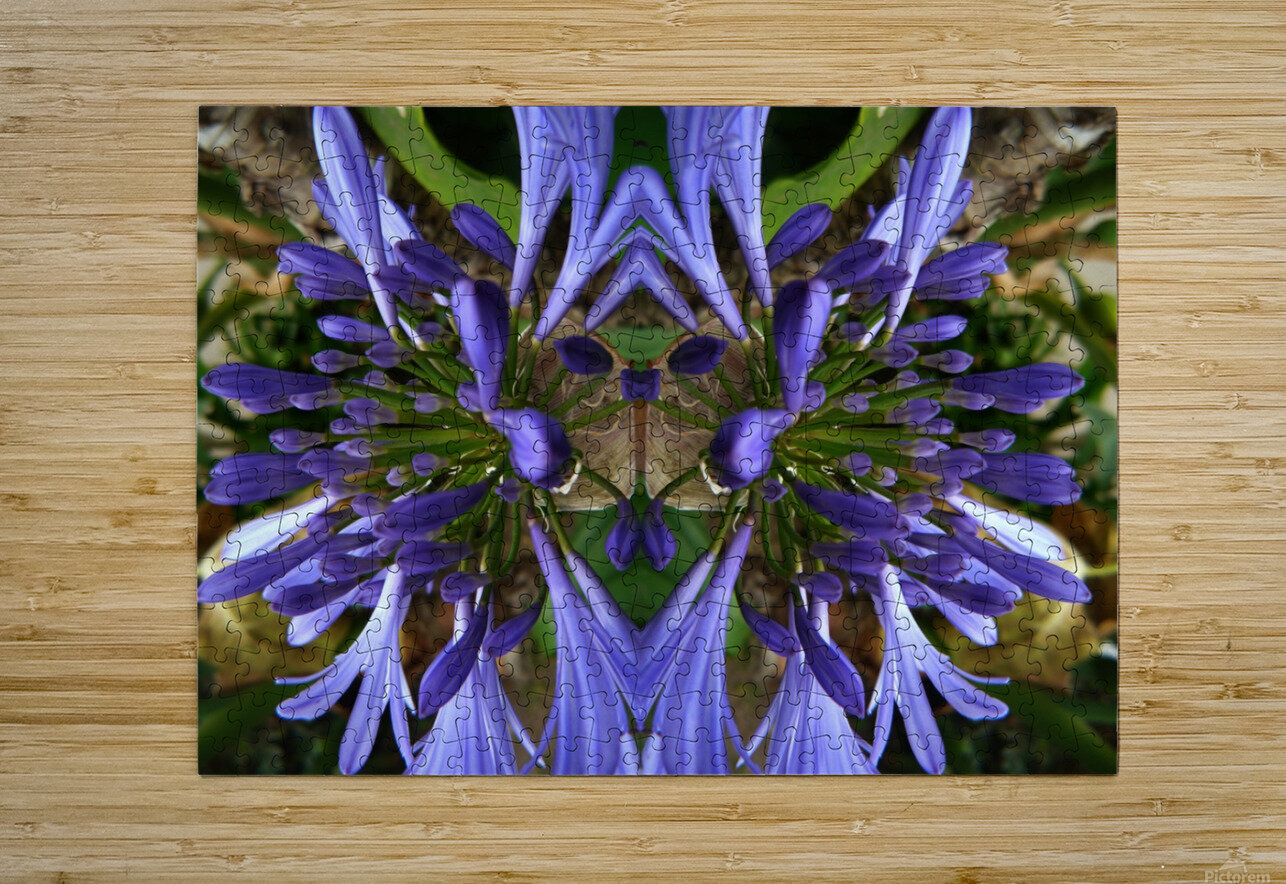 flower3  HD Metal print with Floating Frame on Back