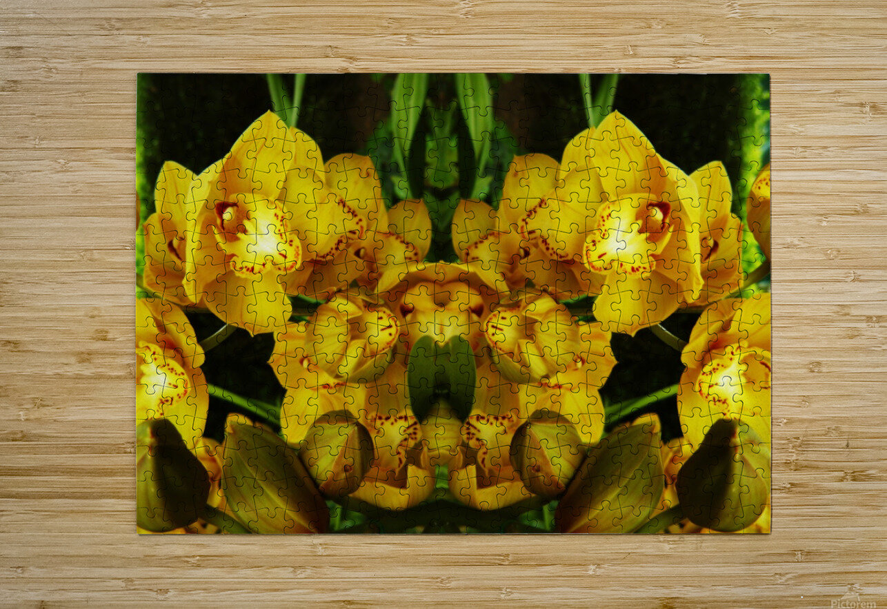 flower65  HD Metal print with Floating Frame on Back