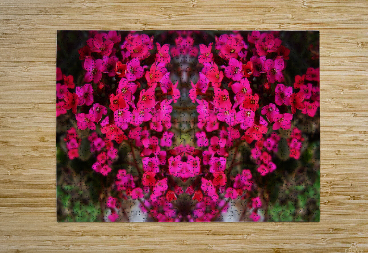 flower29  HD Metal print with Floating Frame on Back