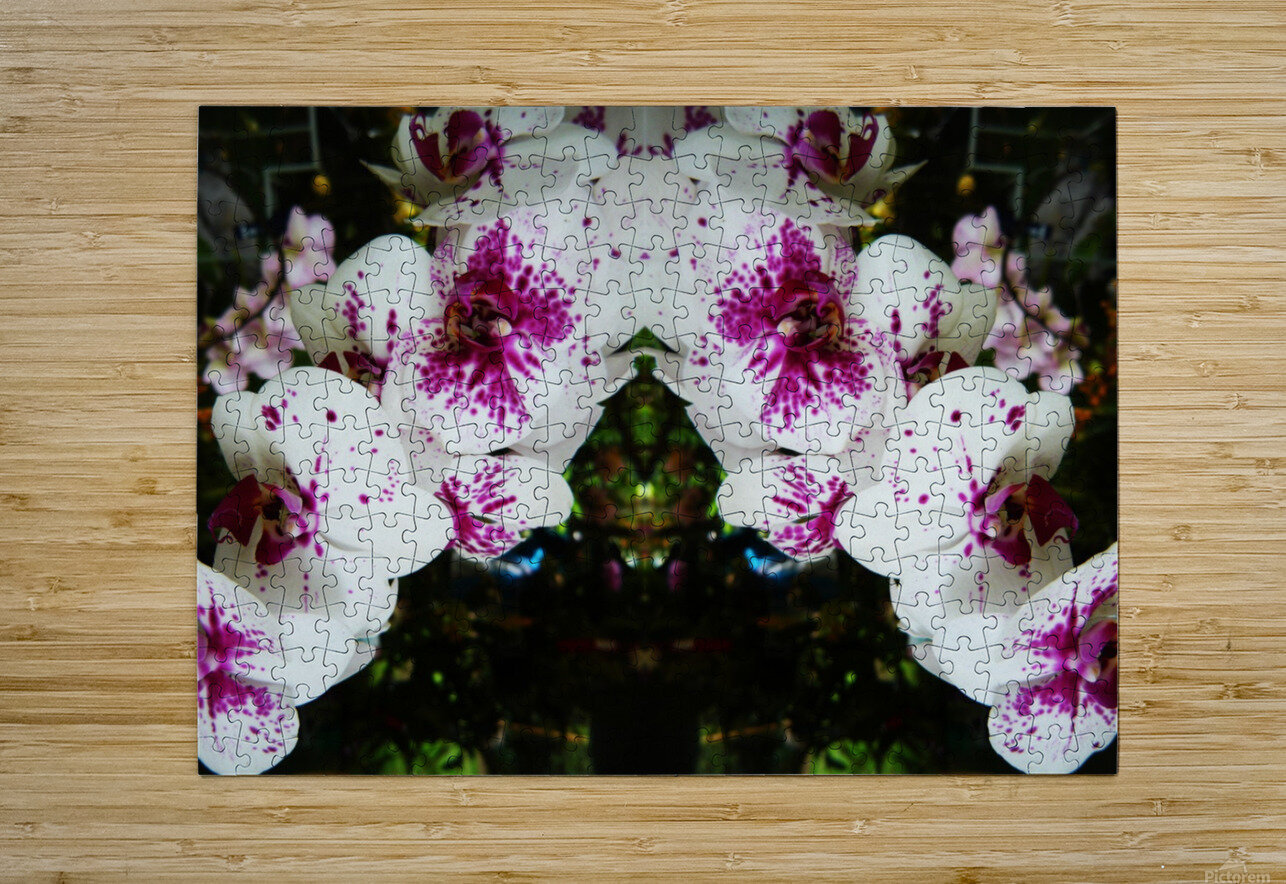 flower63  HD Metal print with Floating Frame on Back
