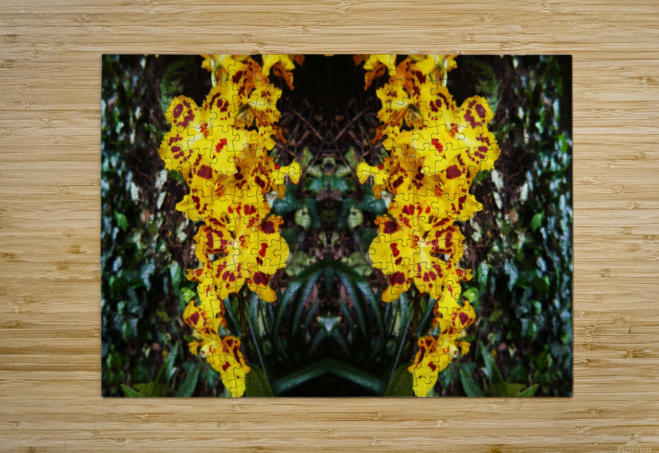 flower55  HD Metal print with Floating Frame on Back