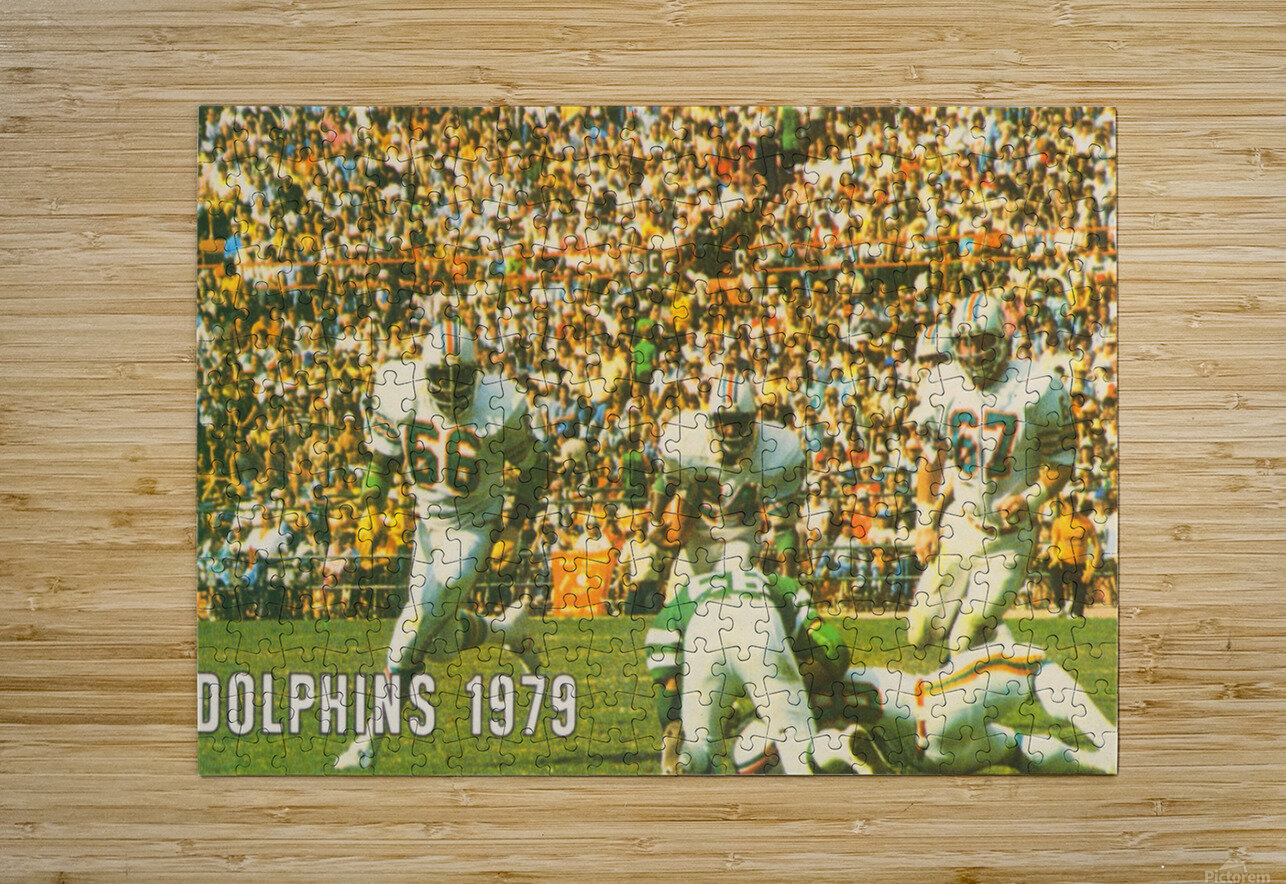 1979 Miami Dolphins Art  HD Metal print with Floating Frame on Back