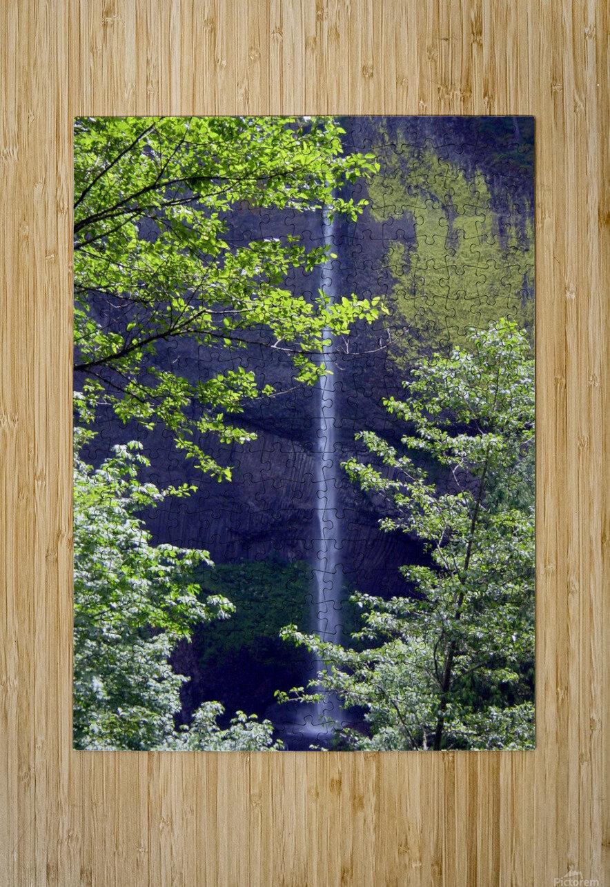 Secret Falls  HD Metal print with Floating Frame on Back