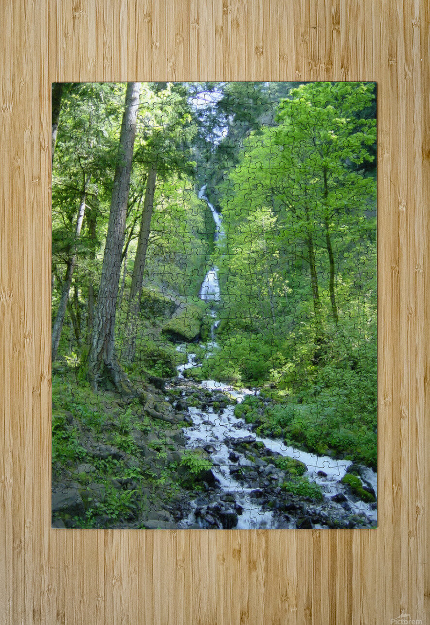 Forest Dreams  HD Metal print with Floating Frame on Back