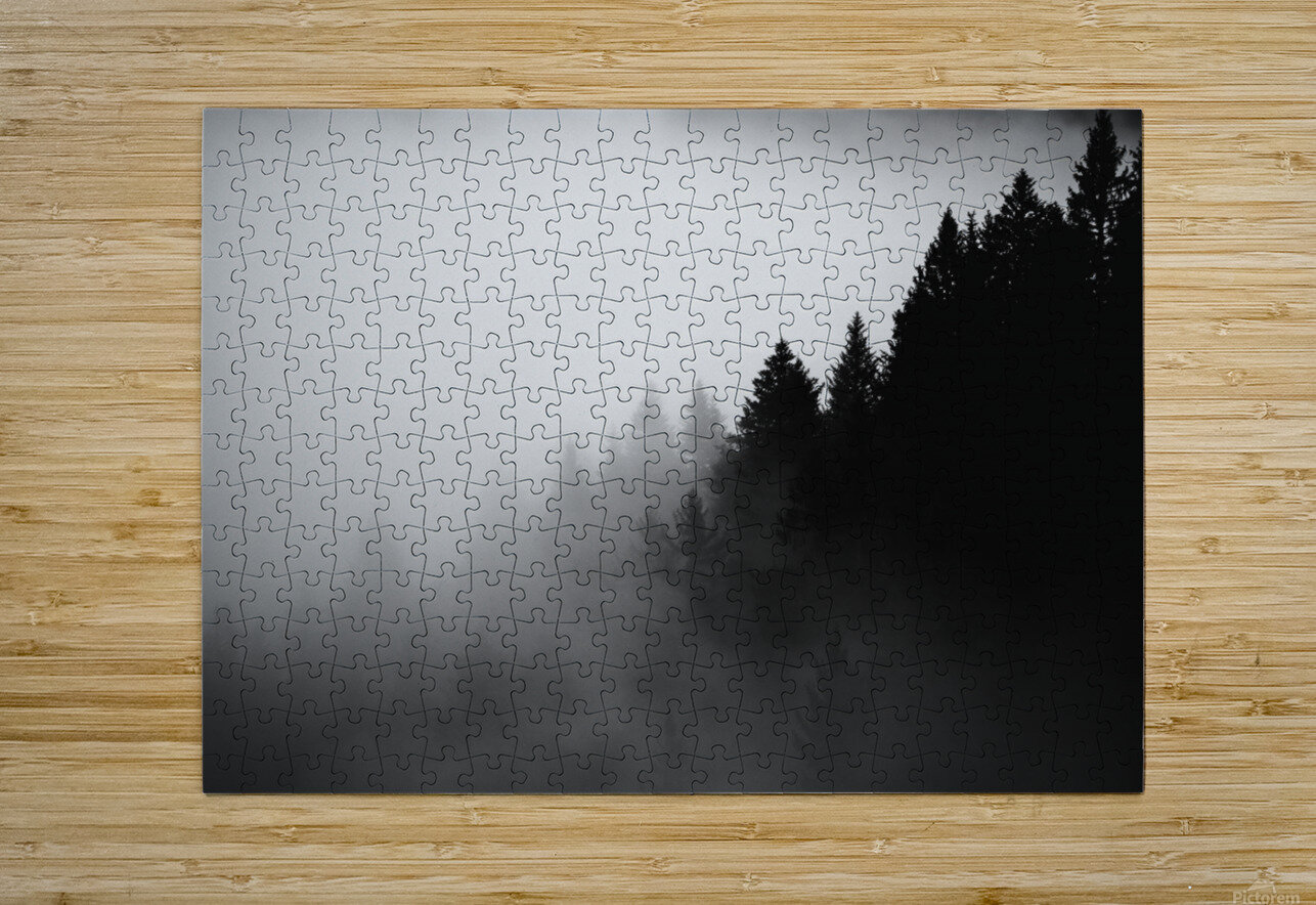 Pine trees in the fog  HD Metal print with Floating Frame on Back