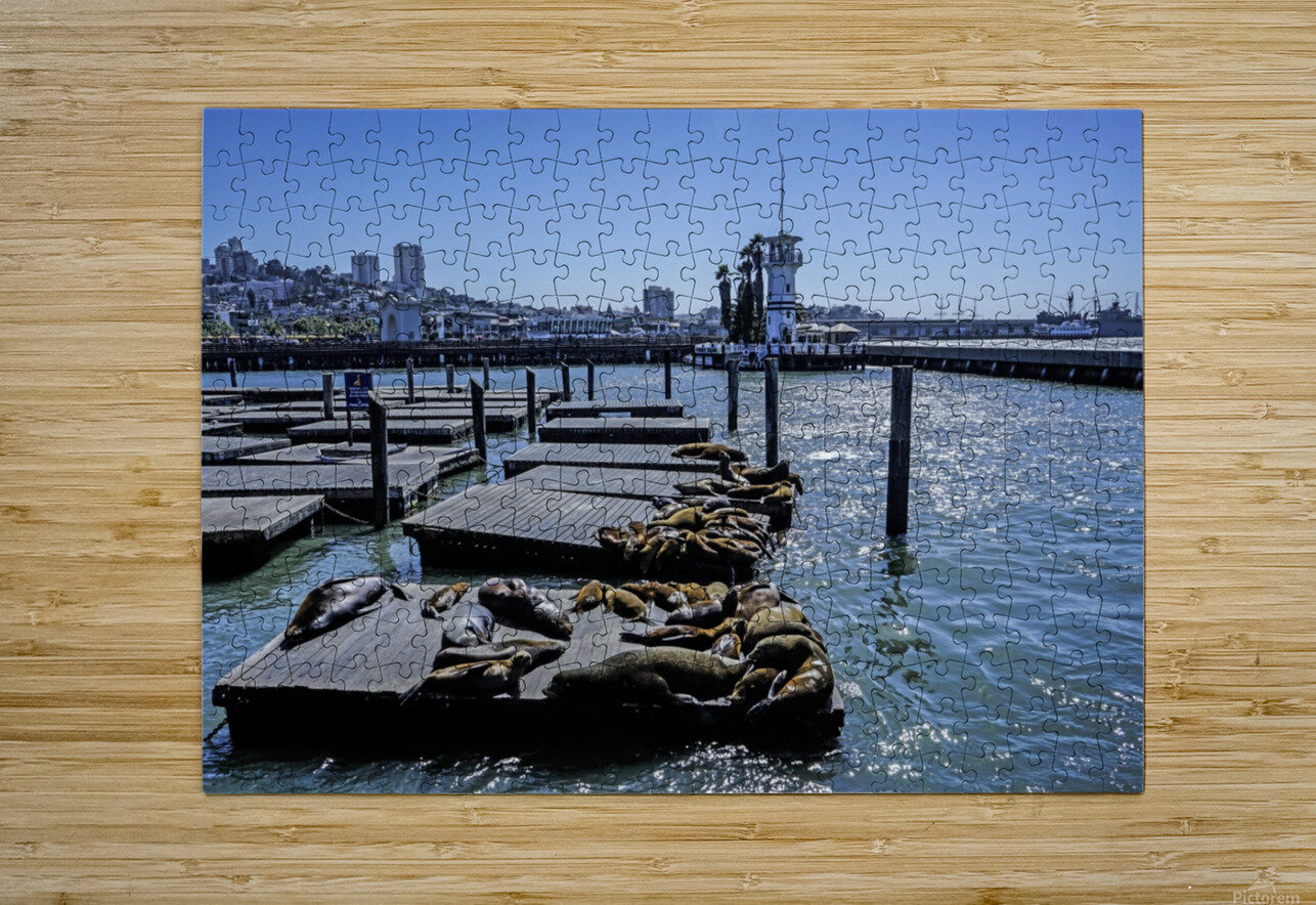 The Wharf @ San Francisco  HD Metal print with Floating Frame on Back