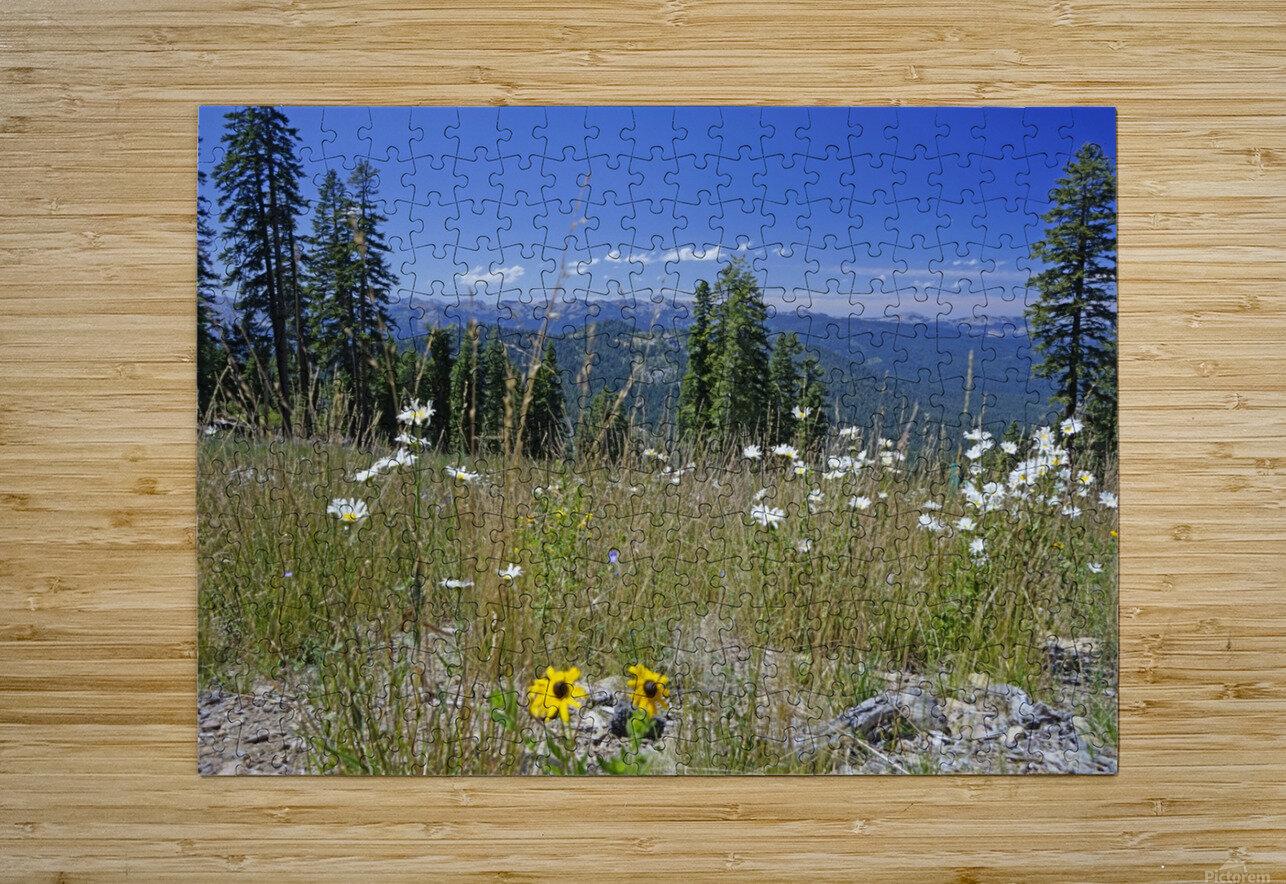 Sierra Nevada in Spring 5 of 8  HD Metal print with Floating Frame on Back