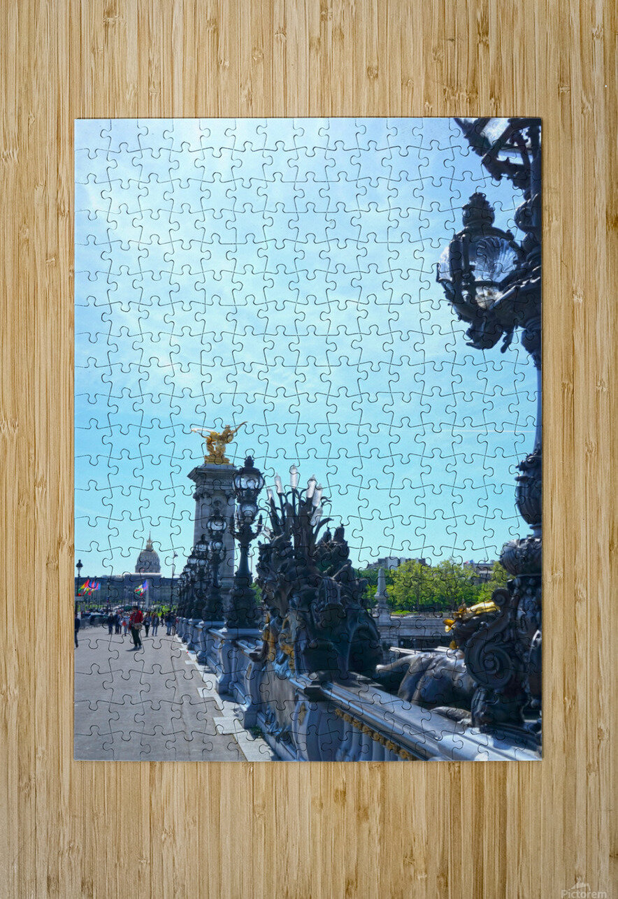 Immortal Paris 4 of 7  HD Metal print with Floating Frame on Back