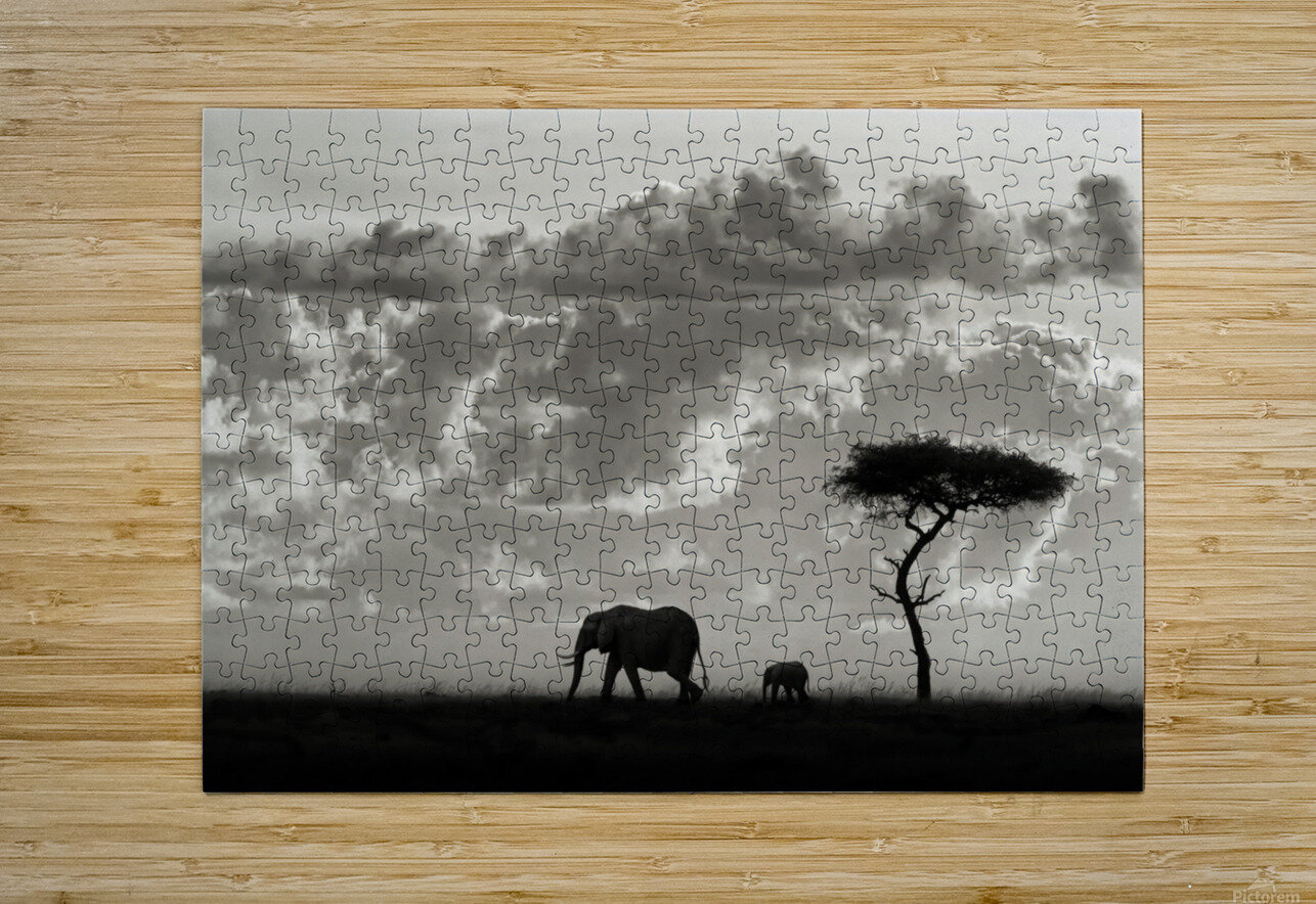 Silhouettes of Mara  HD Metal print with Floating Frame on Back