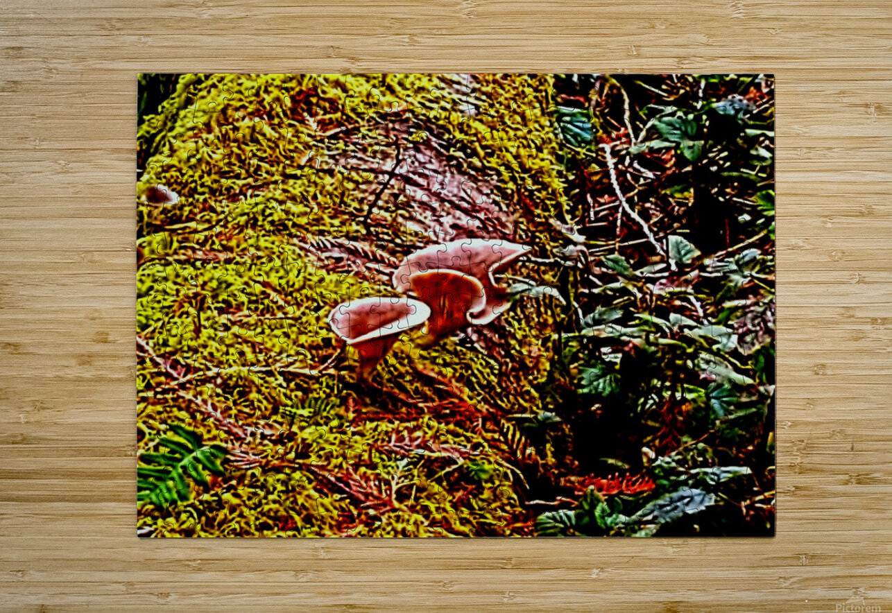 Tiny World 3 of 8  HD Metal print with Floating Frame on Back