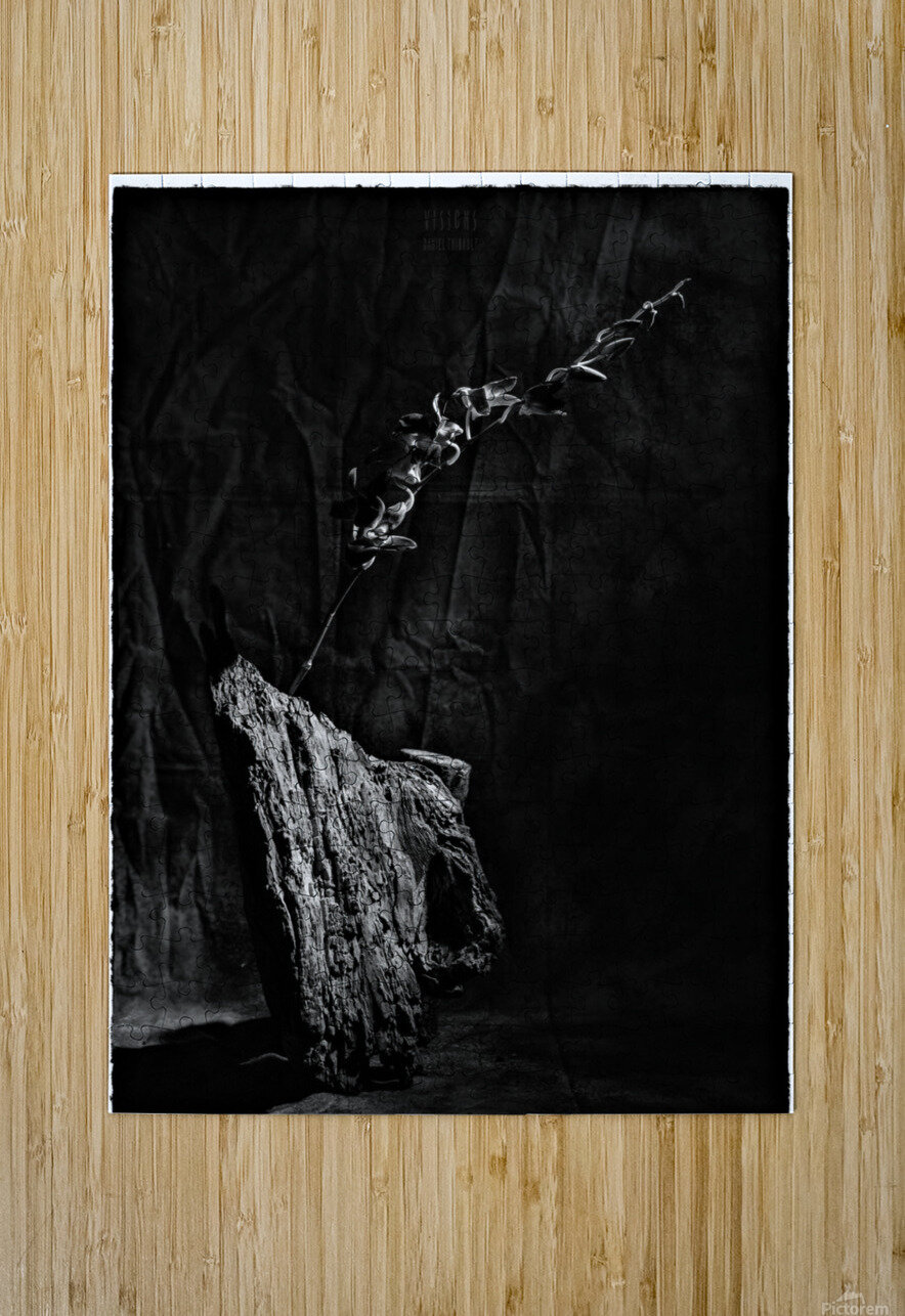 Black and white blues  HD Metal print with Floating Frame on Back