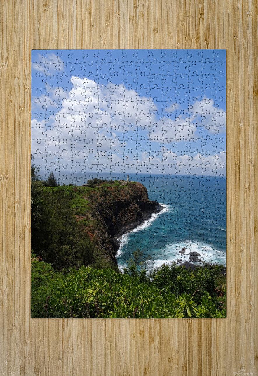 Kauai Lighthouse  HD Metal print with Floating Frame on Back