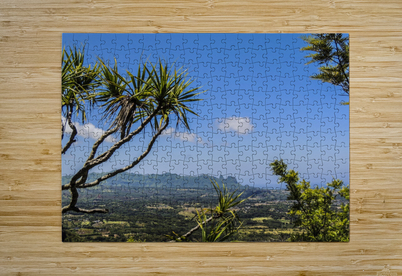 View to Forever  HD Metal print with Floating Frame on Back