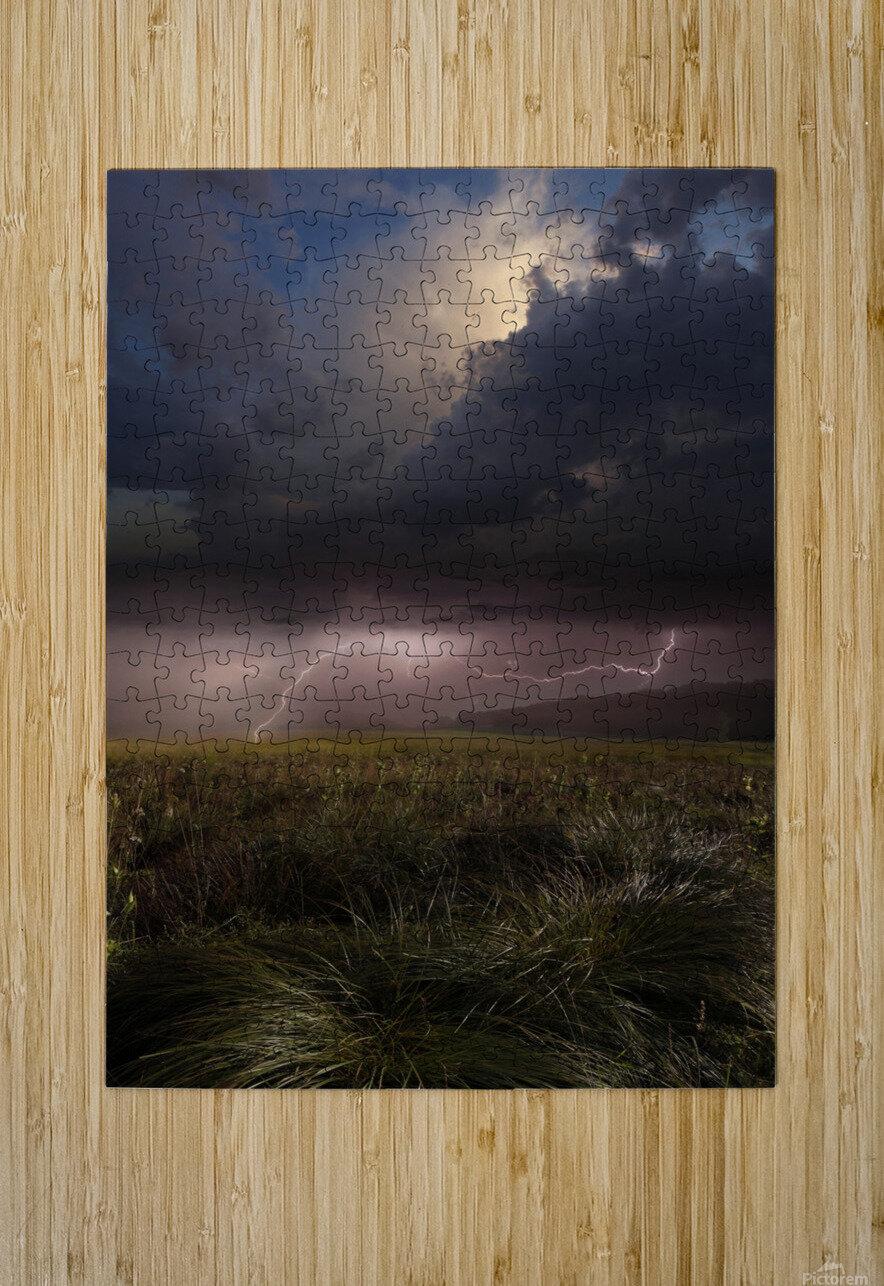 Summer Lights by Franz Schumacher   HD Metal print with Floating Frame on Back