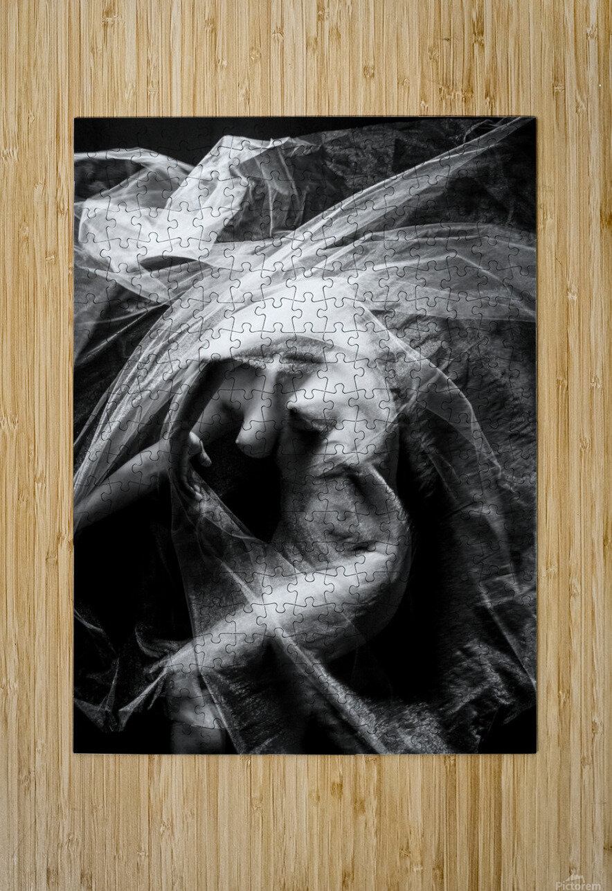 FLUX OF LOVE  HD Metal print with Floating Frame on Back