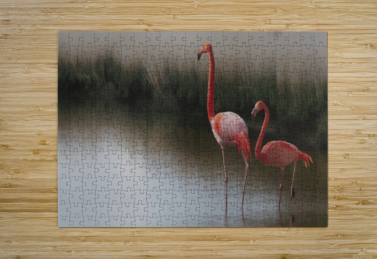 ...  HD Metal print with Floating Frame on Back
