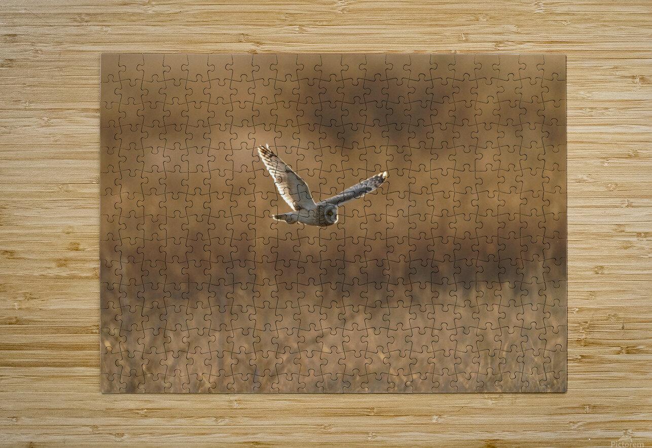 Wesley Allen Shaw 09047  HD Metal print with Floating Frame on Back