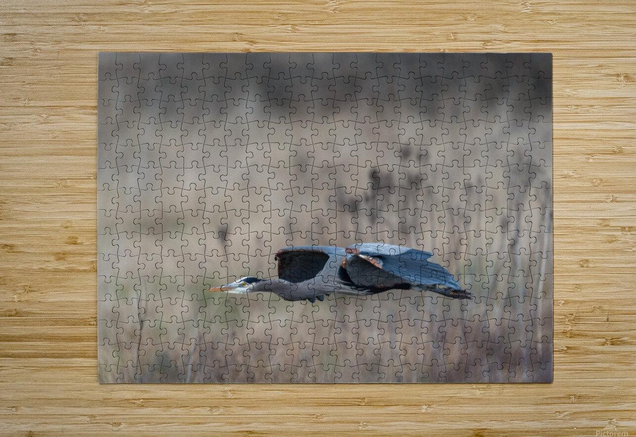 Wesley Allen Shaw 09384  HD Metal print with Floating Frame on Back