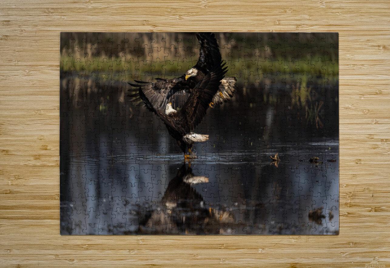 Wesley Allen Shaw 09085  HD Metal print with Floating Frame on Back