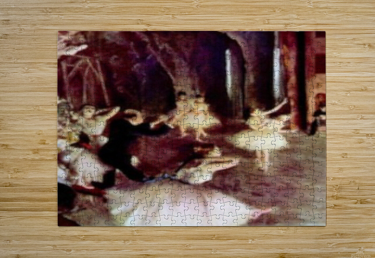 Stage trial by Degas  HD Metal print with Floating Frame on Back