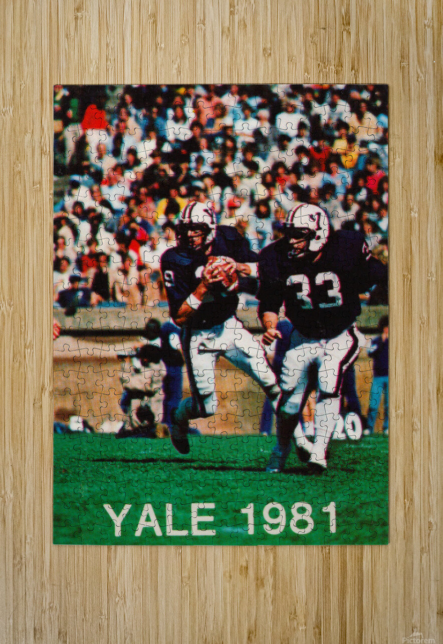 1981 Yale Bulldogs Football Poster  HD Metal print with Floating Frame on Back