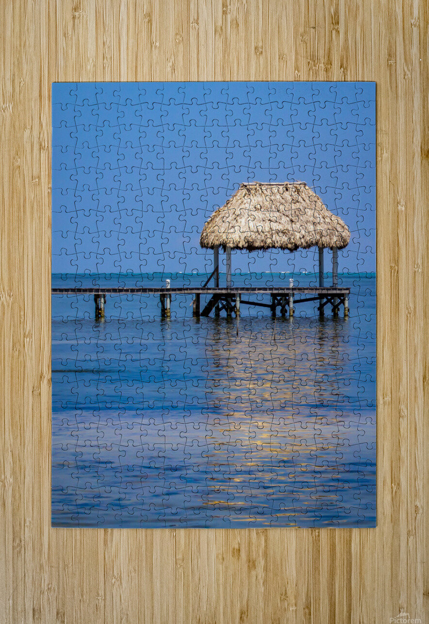 Ambergris Caye 2  HD Metal print with Floating Frame on Back