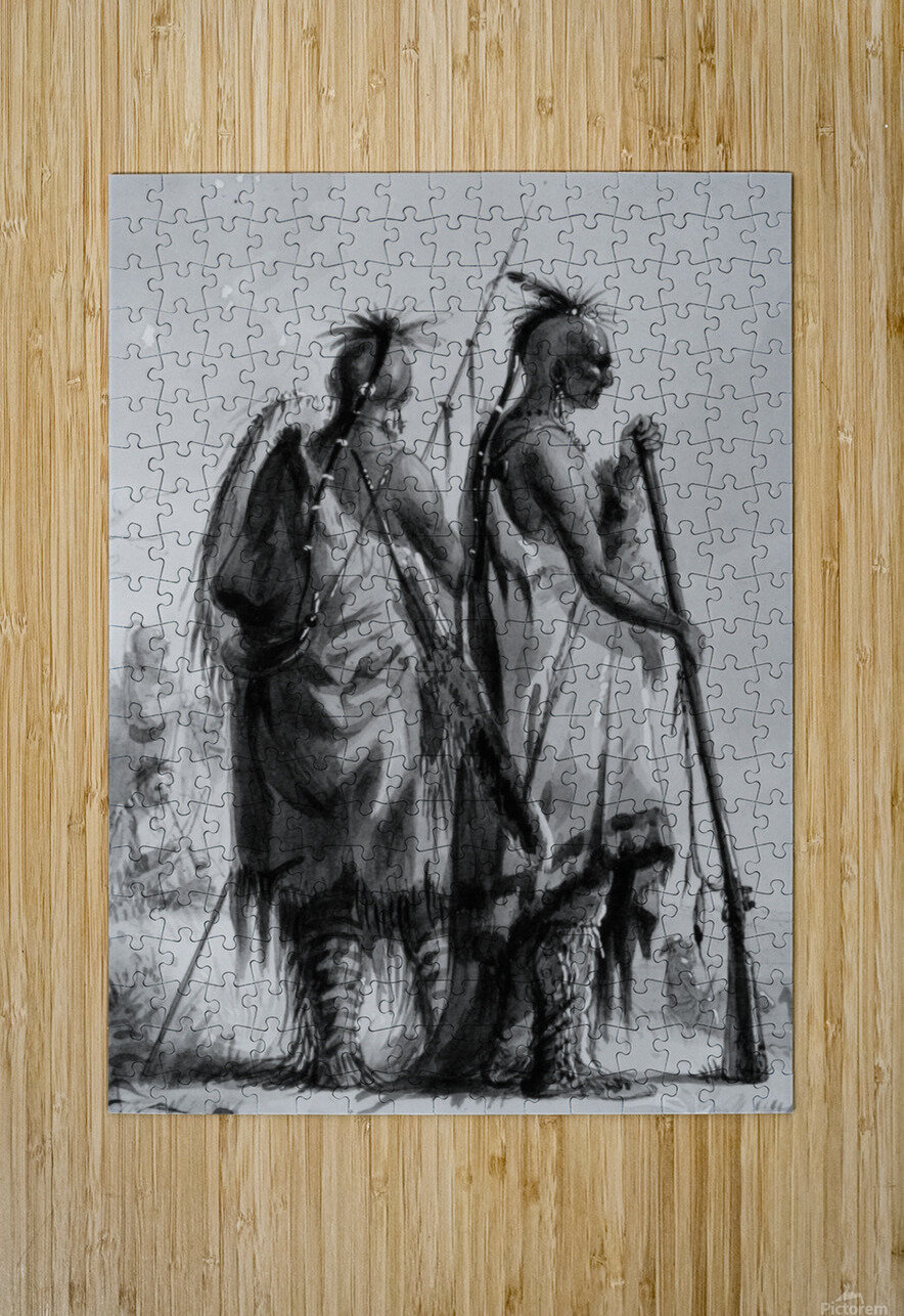 Plains Indian Shields  HD Metal print with Floating Frame on Back