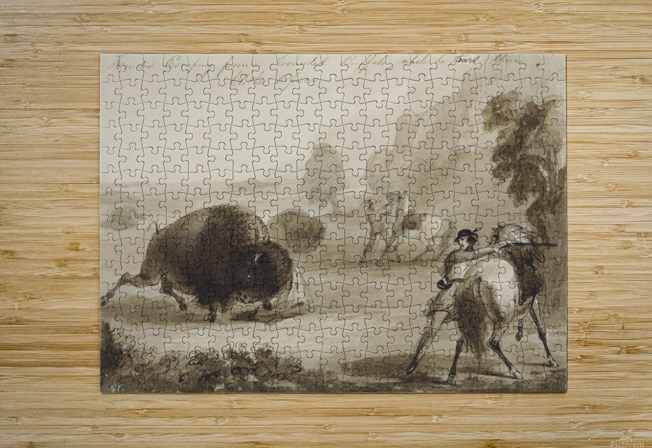 Hunters Escaping from a Wounded Buffalo, While He Tears Their Clothes to Pieces  HD Metal print with Floating Frame on Back