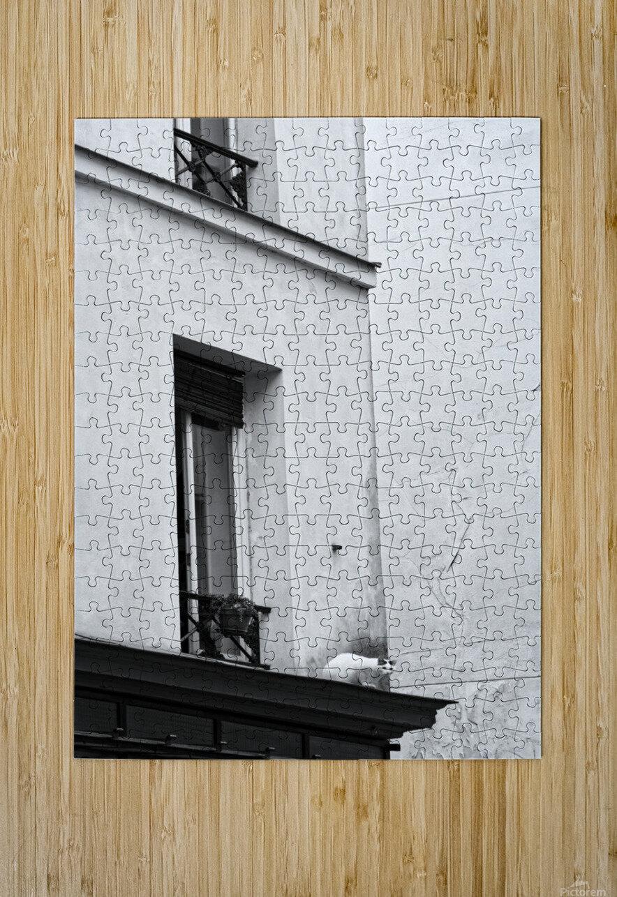 Paris cat  Impression métal HD avec cadre flottant sur le dos