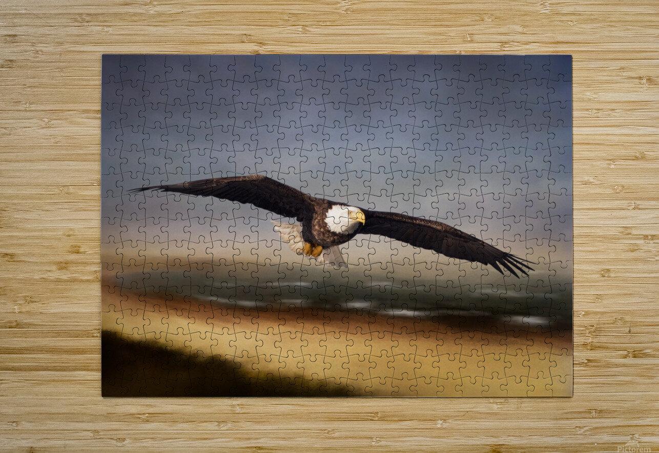 Raptor Skies  HD Metal print with Floating Frame on Back