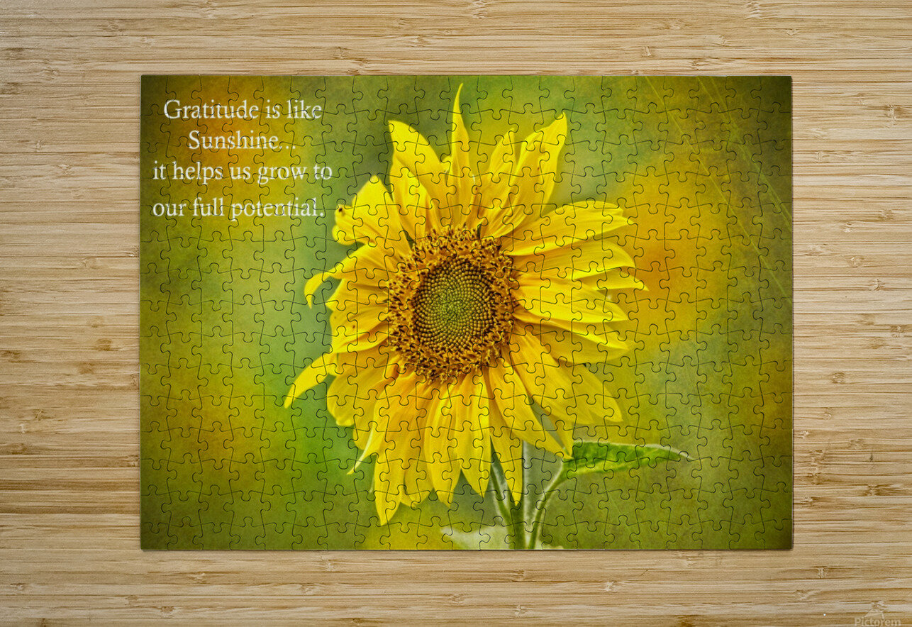 Gratitude is Like Sunshine  HD Metal print with Floating Frame on Back