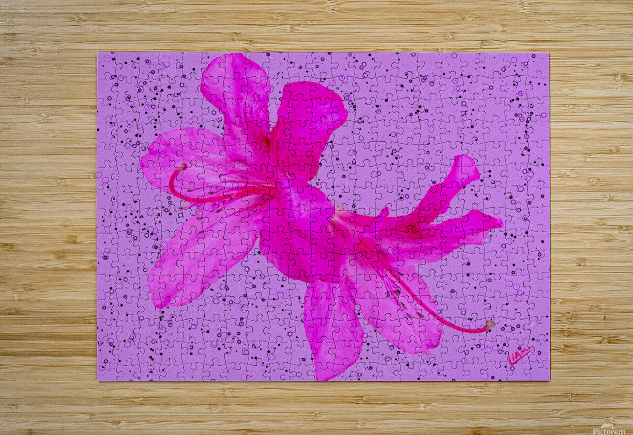 Think Pink  HD Metal print with Floating Frame on Back