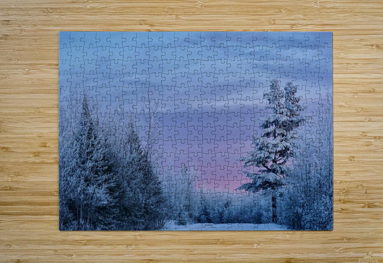 Winter Wonderland   HD Metal print with Floating Frame on Back
