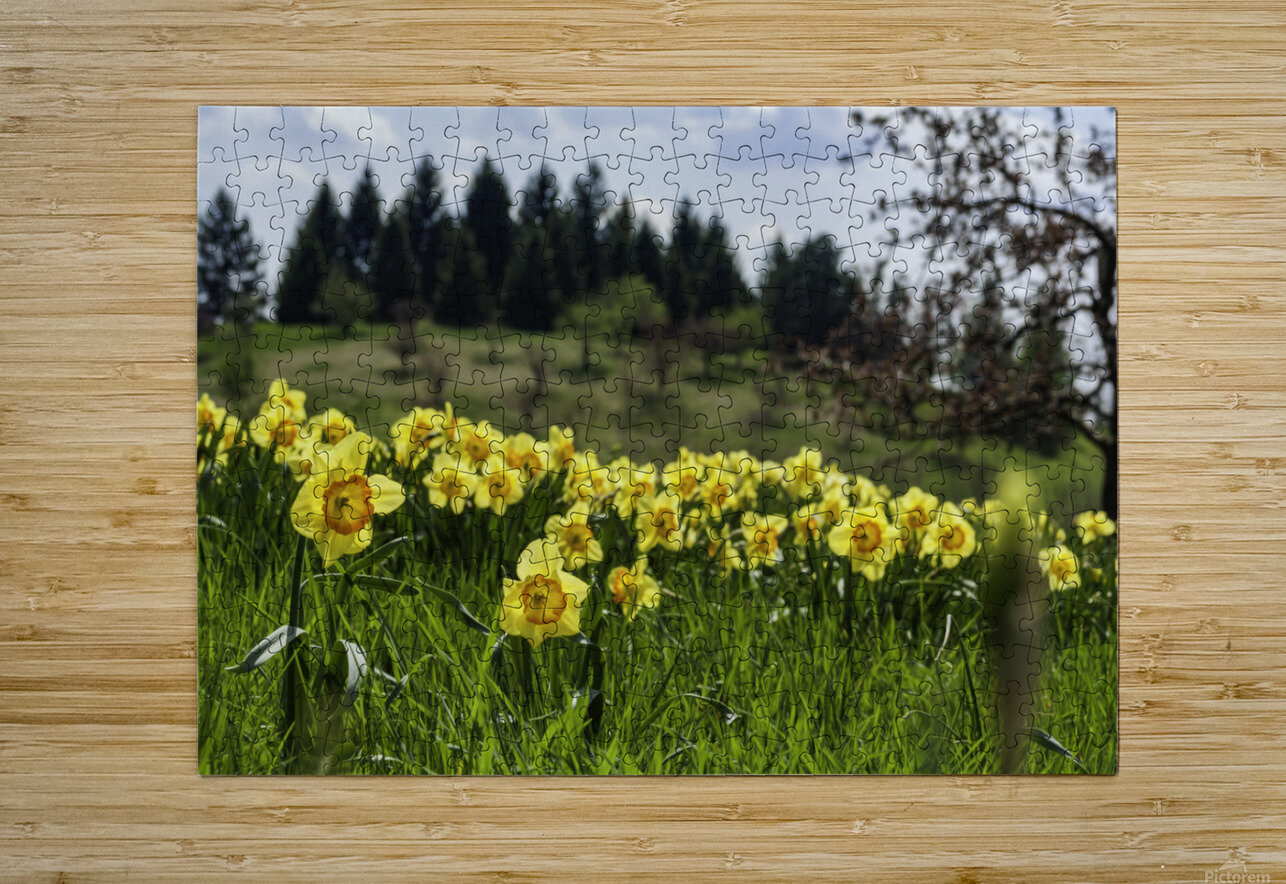 Flowers on the Hills  HD Metal print with Floating Frame on Back