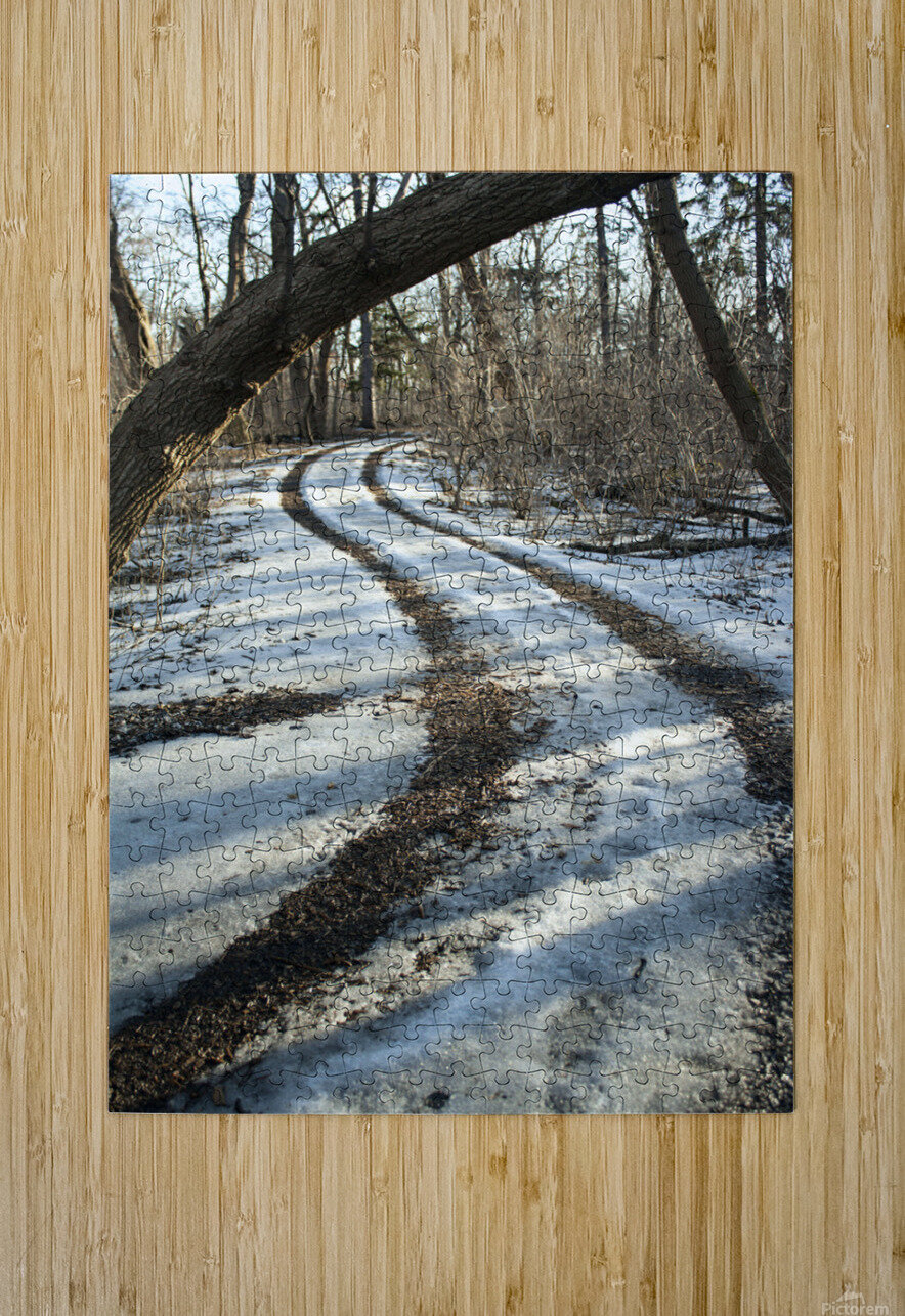 Snowy Trails  HD Metal print with Floating Frame on Back