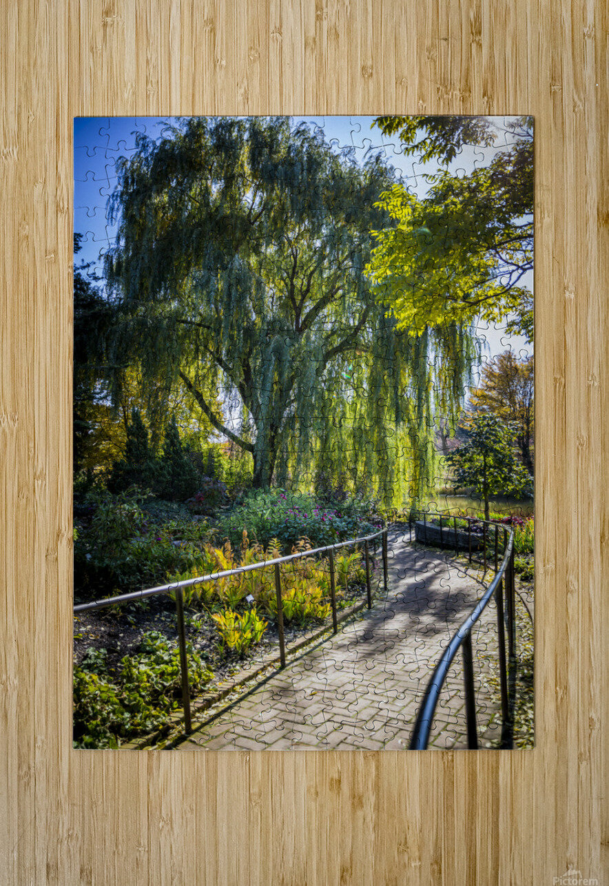 Drape of Trees  HD Metal print with Floating Frame on Back