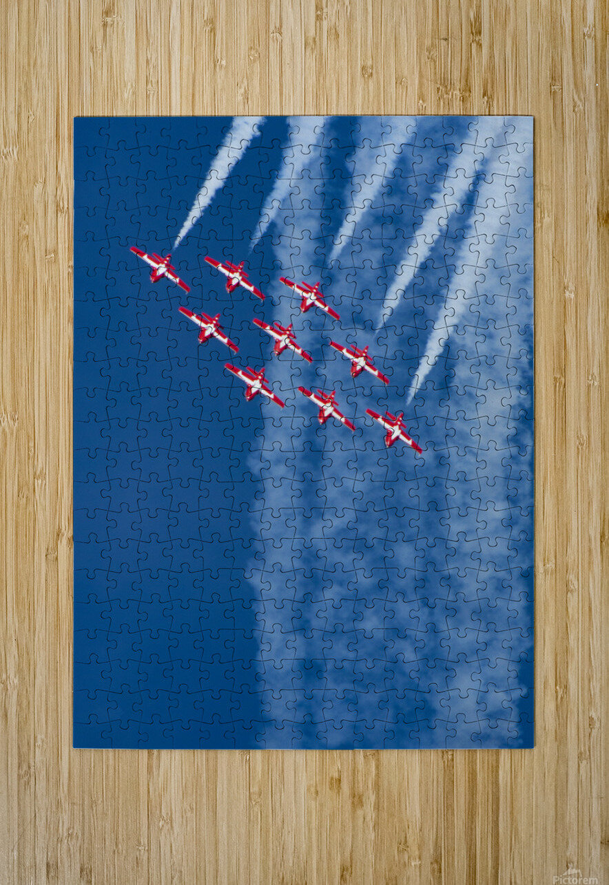 Snow Birds in Flight  HD Metal print with Floating Frame on Back
