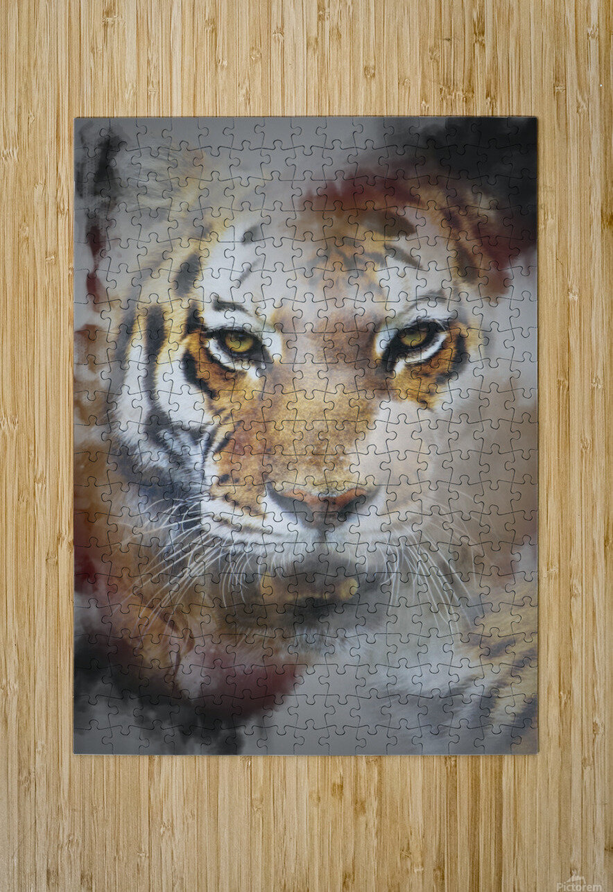 Tigre  HD Metal print with Floating Frame on Back