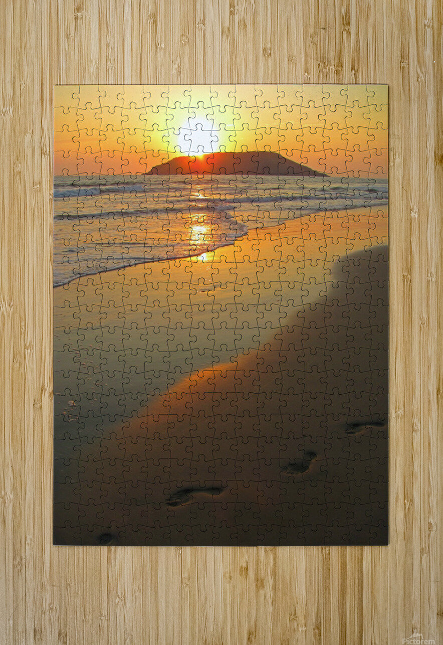 Footprints in the Sand  HD Metal print with Floating Frame on Back
