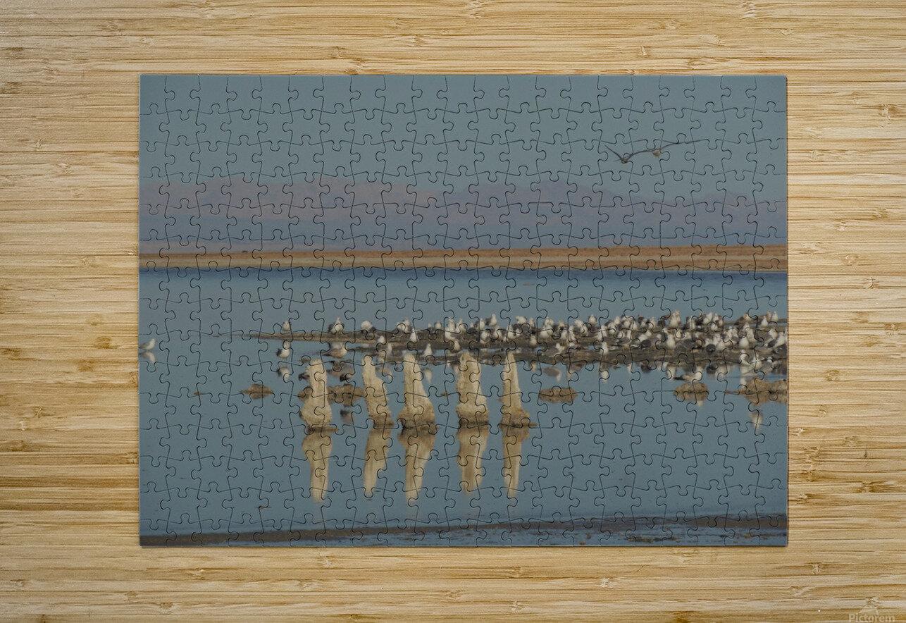 The Salton Sea  HD Metal print with Floating Frame on Back