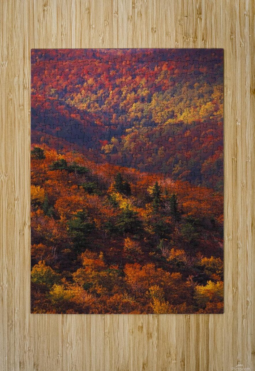 landscape_2_0441  HD Metal print with Floating Frame on Back