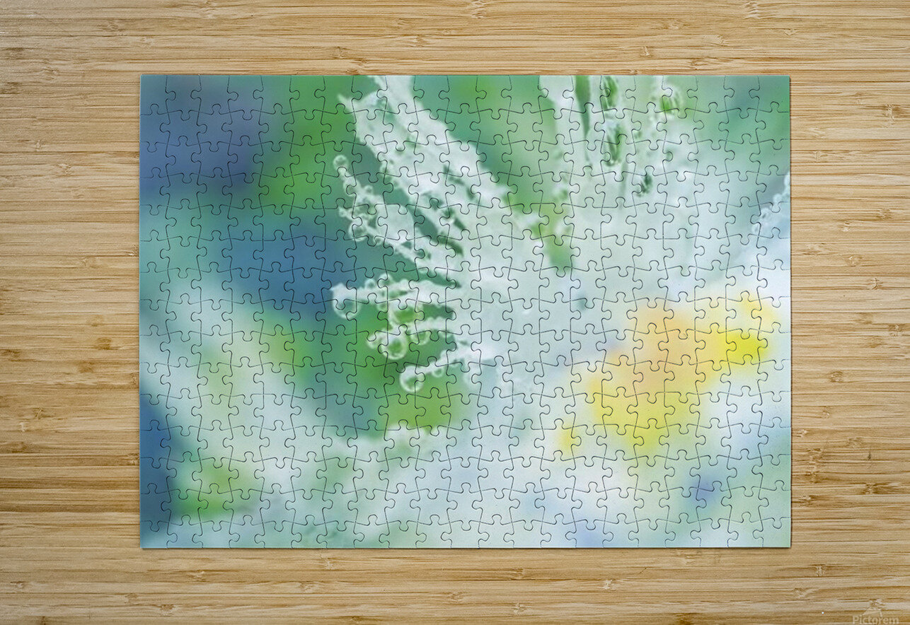 landscape_2_0965  HD Metal print with Floating Frame on Back