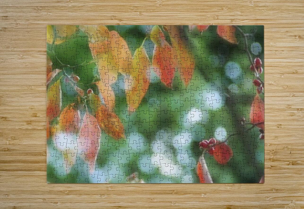 landscape_2_1026  HD Metal print with Floating Frame on Back